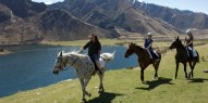 Horse Riding - Ben Lomond Trekking - Everything New Zealand