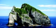 Bay of Islands Day Tour & Hole in the Rock - Everything New Zealand