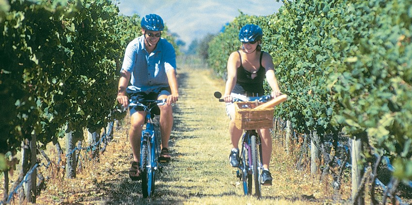 Permalink to Winery Bike Tours Hawkes Bay