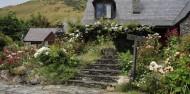 Wine Sampler Tour - Altitude Tours image 4