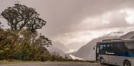 Doubtful Sound Wilderness Day Cruise - Real Journeys image 2