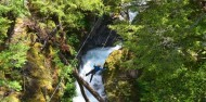 Ziplining - Paradise Ziplines image 5