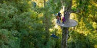 Ziplining - Original Canopy Tour image 3