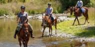 Horse Riding - Adventure Playground image 1