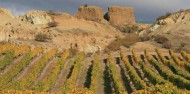 Wine Tours - Appellation Central Wine Tours image 6