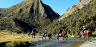 Horse Riding - Ben Lomond Trekking image 7