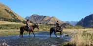 Horse Riding - Ben Lomond Trekking image 5