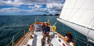 Bay of Islands Sailing Experience image 3