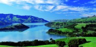 Akaroa Harbour Nature Cruise image 2
