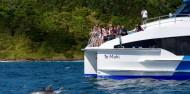 Original Cream Trip Cruise image 4