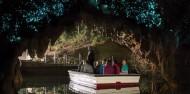 Waitomo Glowworm Caves - Discover Waitomo image 2