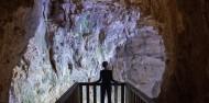 Waitomo Glowworm Caves - Discover Waitomo image 5