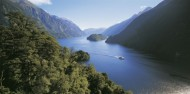 Doubtful Sound Wilderness Day Cruise from Te Anau - Real Journeys image 4