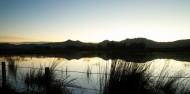 Dunedin Bays & Beaches image 2