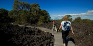 Rangitoto Island Volcanic Explorer image 5