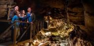 Te Anau Glow Worm Caves image 6