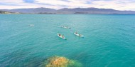 Kayaking - Golden Bay Kayaks image 8