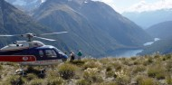 Helicopter Flight - Milford & Alps image 1