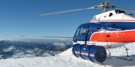 Helicopter Flight - Glacier Landing image 4