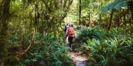 Lake Cruise & Guided Walk - Hidden Hankinson image 4