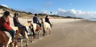 Horse Riding & Wine Tour - Auckland & Beyond Tours image 4