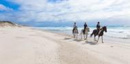 Horse Riding & Wine Tour - Auckland & Beyond Tours image 1