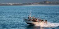 Fishing Trip - Kaikoura Fishing Tours image 4