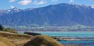 Kaikoura Day Tour & Whale Watching image 6