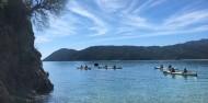 Kayaking - 3 Day Length of Abel Tasman image 9