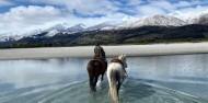 Dart River Wilderness Jet & Horse Riding Combo image 4
