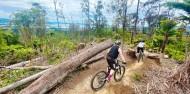 Mountain Biking - Redwood Forest image 2