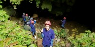 Waitomo Glow Worm Caves - Glowing Adventures image 6
