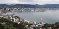 Wellington City Scenic Tour image 2