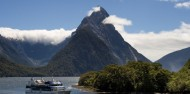 Milford Sound Coach & Cruise from Te Anau - Real Journeys image 6