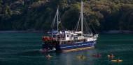 Milford Sound Overnight Cruise - Wanderer image 5