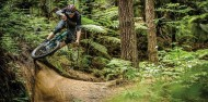 Mountain Biking - Redwood Forest image 5