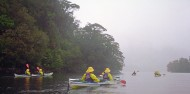 Kayaking - Sea Kayak Fiordland Overnight image 3