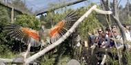 Orana Wildlife Park & Open Range Zoo image 6