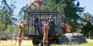 Orana Wildlife Park & Open Range Zoo image 8
