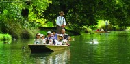 Punting on the Avon River and Botanic Gardens image 5