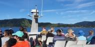 Picton Mail Boat Cruise - Beachcomber Cruises image 6