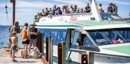 Picton Mail Boat Cruise - Beachcomber Cruises image 2
