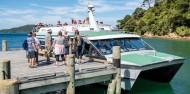 Queen Charlotte Track Day Walk & Cruise - Beachcomber Cruises image 2