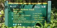 Queen Charlotte Track Day Walk & Cruise - Beachcomber Cruises image 5