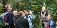 Ulva Island Guided Walk – Rakiura Charters and Water Taxi image 6