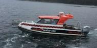 Ulva Island Guided Walk – Rakiura Charters and Water Taxi image 4