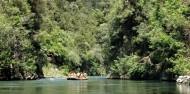 Rafting - Rangitaiki Scenic Grade 2 image 2