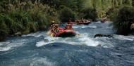 Rafting - Rangitaiki River Grade 3-4 image 4