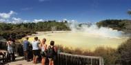 Geyser Link Rotorua - Wai-O-Tapu & Waimangu - Headfirst Travel image 2