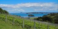 Food & Wine Tour - Taste of Waiheke image 5